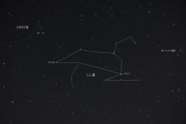 Leo_com