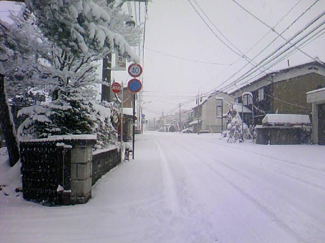 今年も大雪がやってきました