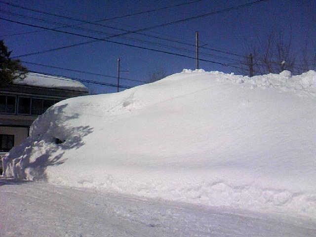 雪が積み上がりました
