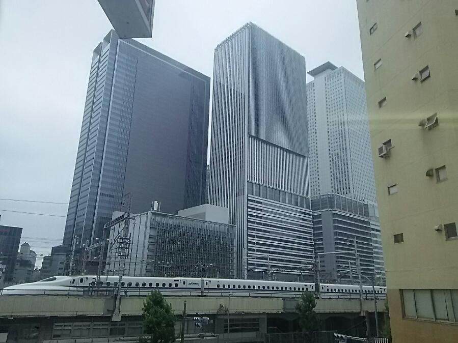 東海方面、名古屋拝顔巡業です。