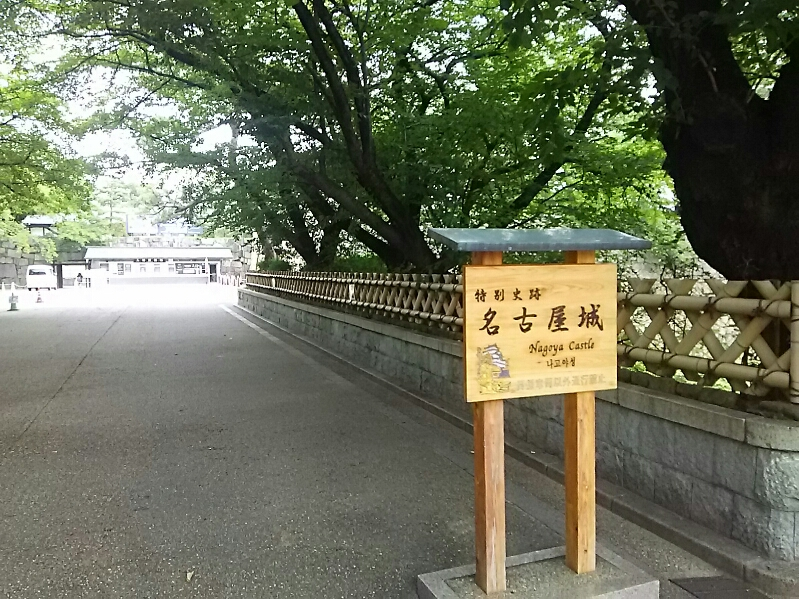 今日は名古屋拝顔巡業です。
