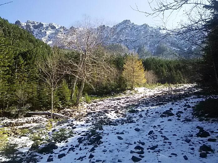 今、八ヶ岳山中、初冠雪です。