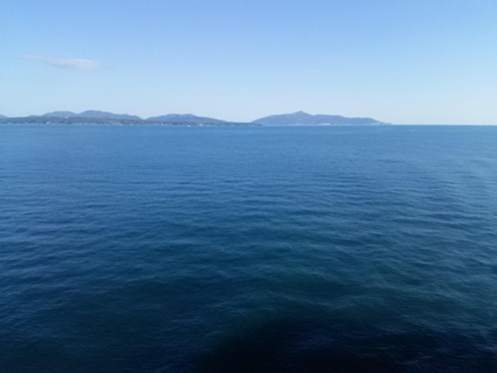 宮城県金華山沖です。