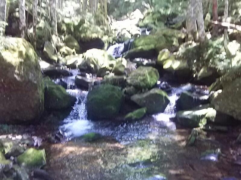 八ヶ岳、夏沢の渓流