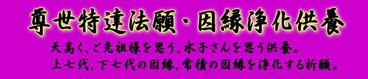 Sonsei_bana